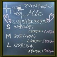 Mic3Dエクステ料金表